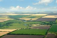 Aerial View,Farm,Agricultur...