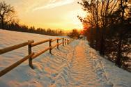 Winter,Landscape,Footpath,S...