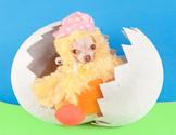 Easter,Dog,Young Animal,Bir...