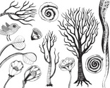 Tree,Sketch,Bird,Doodle,Dra...