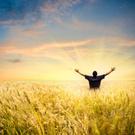 Wheat,Harvesting,Field,Men,...
