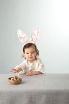 Bunny Ears Cactus,Little Gi...