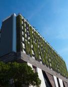 Green Color,Roof,Environmen...