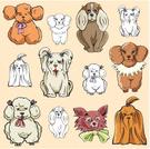 Poodle,Dog,Toy,Puppy,Pets,P...