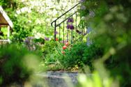 Formal Garden,House,Fence,S...