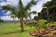 Flower Bed,Hawaii Islands,T...