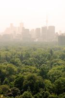 Smog,Toronto,Heat - Tempera...