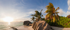Beach,Seychelles,Island,Tro...