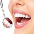 Human Teeth,Dental Health,S...
