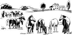 Horse,Ranch,Farm,Farmhouse,...
