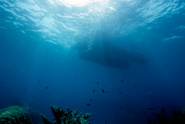 Underwater,Nautical Vessel,...