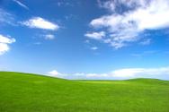 Grass Area,Field,Sky,Landsc...