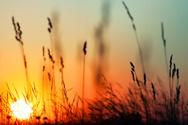 Sunrise - Dawn,Sunset,Autum...