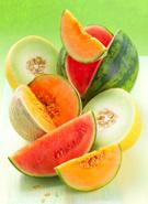 Melon,Variation,Slice,Cross...