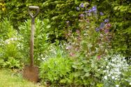Gardening,Flower Bed,Orname...