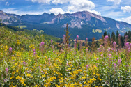 Colorado,Mountain,Summer,Ro...