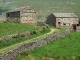 Barn,UK,Farm,Agriculture,Yo...