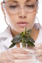 Scientist,Plant,Women,Scien...