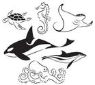 Sea Turtle,Turtle,Stingray,...