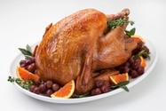 Turkey - Bird,Thanksgiving,...