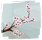 Cherry Blossom,Japanese Cul...