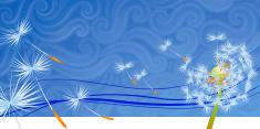 Dandelion,Wind,Wishing,Summ...
