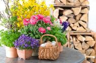 Flower,Arrangement,Freshnes...