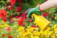 Insecticide,Gardening,Flowe...