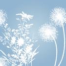 Dandelion,Flower,Branch,Spr...