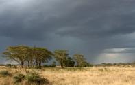Africa,Storm,Serengeti Nati...