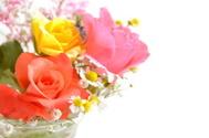 Bouquet,Rose - Flower,Flowe...