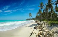 Beach,Tropical Climate,Sea,...