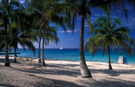 Cuba,Beach,Hammock,Sea,Isla...