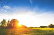 Sweden,Summer,Landscape,Agr...