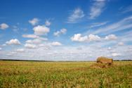 Hay,Stack,August,Wheat,Fiel...
