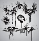Human Skull,Skull and Cross...