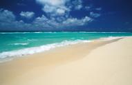Beach,Tropical Climate,Mexi...