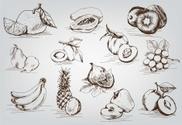 Peach,Sketch,Ilustration,Pl...