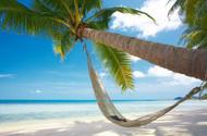 Beach,Hammock,Cruise,Sun,Tr...