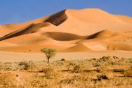 Desert,Namibia,Sand Dune,Af...