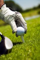 Golf,Golf Ball,Tee,Golf Clu...