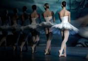 Ballet,Ballet Dancer,Theatr...