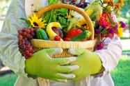 Vegetable,Flower,Single Flo...