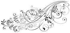 Floral Pattern,Swirl,Scroll...
