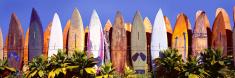 Surfboard,Surfing,Hawaii Is...