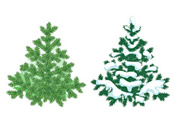 Snow,Tree,Evergreen Tree,Fi...