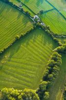 Aerial View,Farm,Mid-Air,Fi...