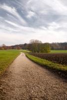 Landscape,Vertical,wayside,...