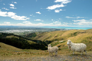 Christchurch,New Zealand,Sh...