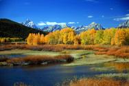 Yellowstone National Park,M...